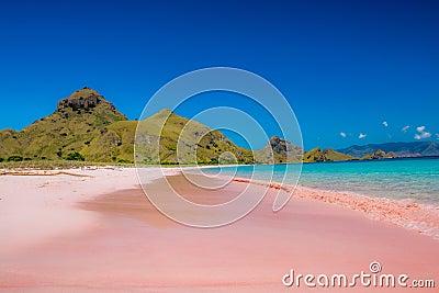 Rosa Strand Stockfoto Bild 41037024