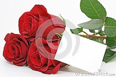 Rosas vermelhas com uma nota em branco
