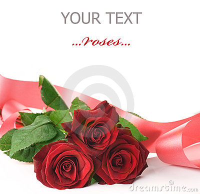 Free Rose Royalty Free Stock Photography - 12414877