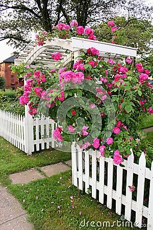 Free Rose Arbor Stock Image - 955081