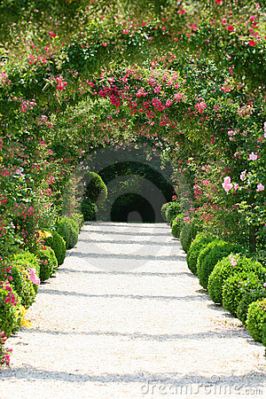 Free Rose Arch In The Garden Royalty Free Stock Photos - 8052368