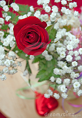 Valentines Rose and Babys Breath