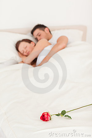 Rose On A Bed Of Sleeping Couple Royalty Free Stock Photos - Image: 20568008