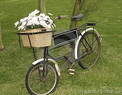 Rose bicycle
