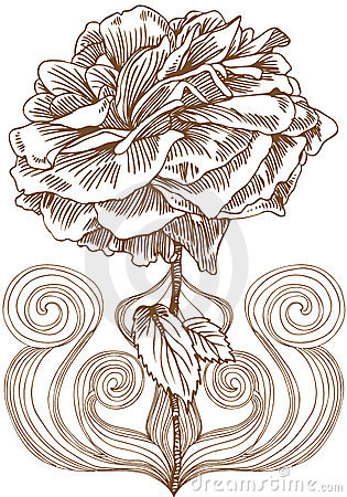 Rose Bloom Artistic