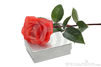 Rose and box
