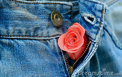 A rose bud in unzipped jeans