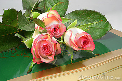 Rose-buds and chocolates
