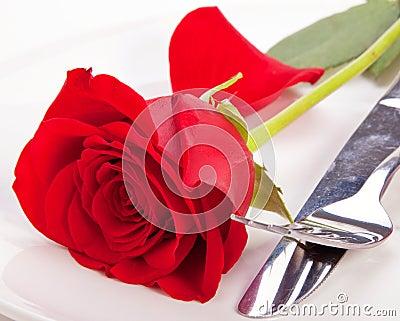 Rose in einer Platte