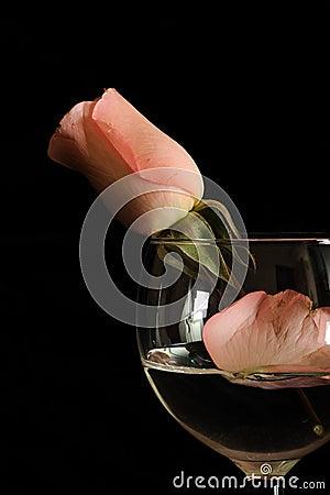 Rose en glace