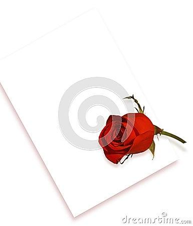 Rose et lettre