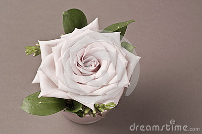 Rose flower decoration