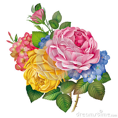 Rose Flower Drawing Painting Stock Photos Image 37160273