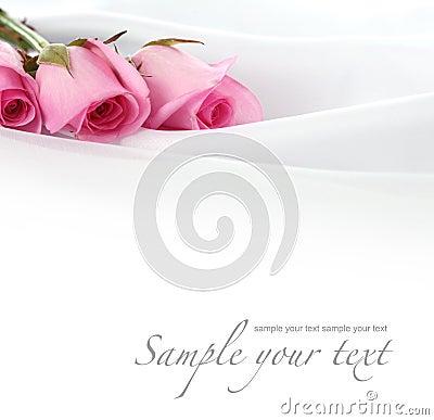 Rose flower on silk
