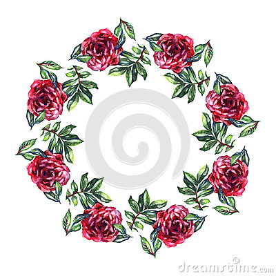 Rose Flower Wreath Floral Circle Border Watercolor On White Background Royalty Free Stock Photography
