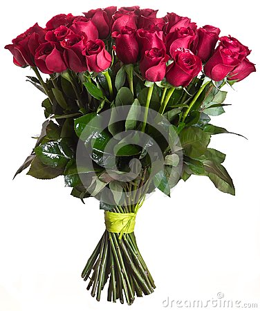 Free Rose Flowers Bouquet Isolated Stock Photography - 28428162