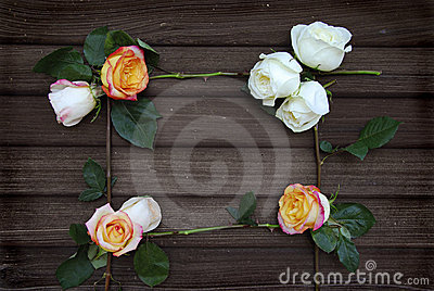 Rose Frame on old Barn wood