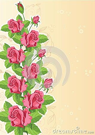Rose funny card