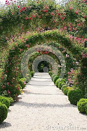 Free Rose Garden Landscape Stock Images - 2622414
