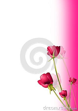 Rose greetings