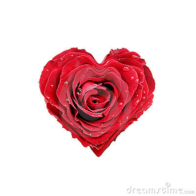 Free Rose Heart Royalty Free Stock Images - 19723279