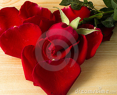Rose and heart form petal