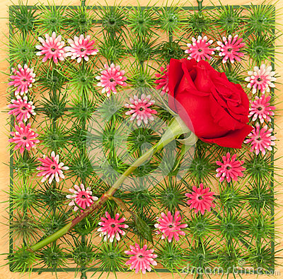 Rose on heart shape symbol