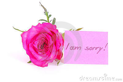 Rose with I am sorry note