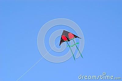Rose Kite