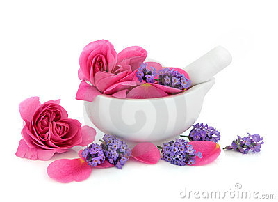 Rose and Lavender Flowers