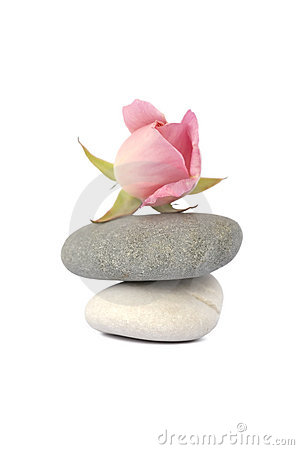 Free Rose On Stones In Balance Royalty Free Stock Photo - 3506385