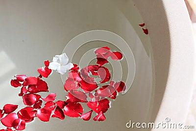 Rose petal in bath