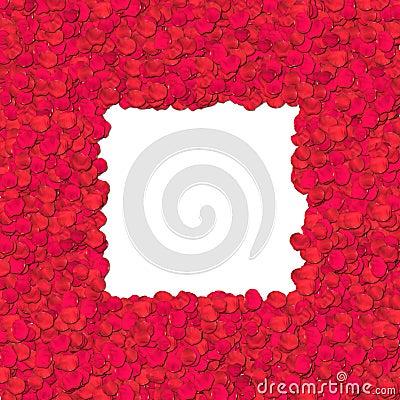 Rose petal - border