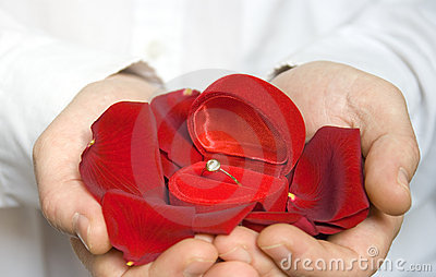 Rose petals and engagement ring / Valentine