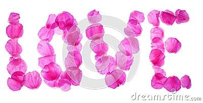 Rose petals love