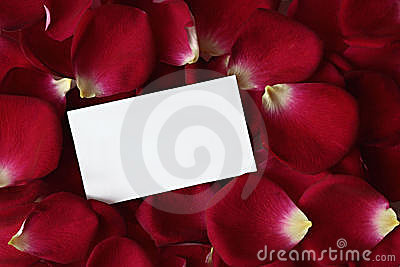 Rose Petals with Note Card