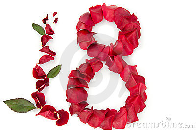 Rose petals in a shape of a eight