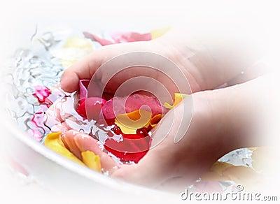 Rose petals for spa
