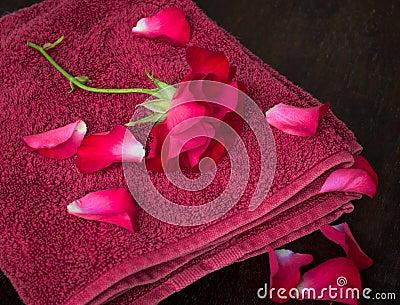 Rose petals spa