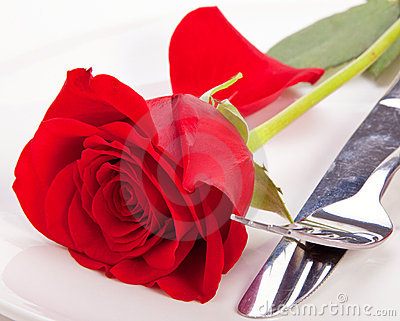 Rose In A Plate Royalty Free Stock Photo - Image: 22935985