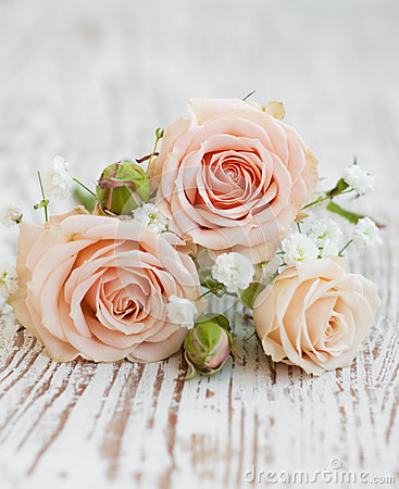Rose Rosa-chiaro Immagini Stock Libere da Diritti ...
