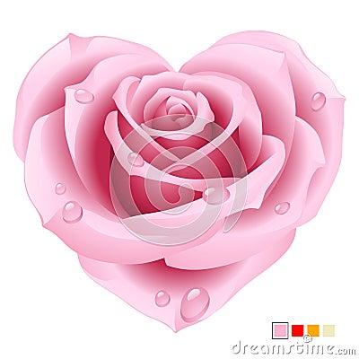 Rose rose sous forme de coeur