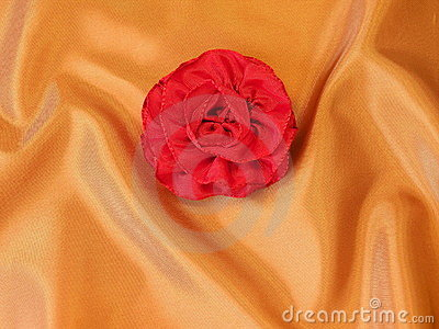 Rose on silk