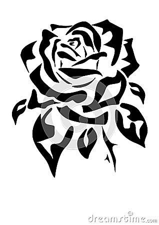 Rose .  Tattoo .