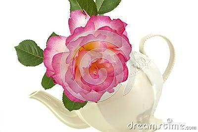 Rose In A Teapot