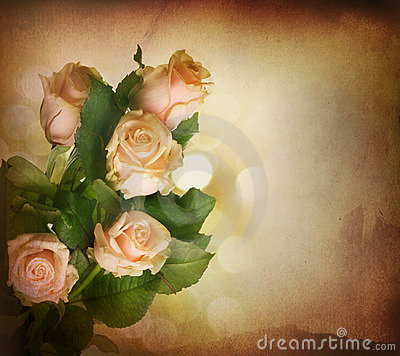 Free Rose.Vintage Styled Stock Image - 13047881