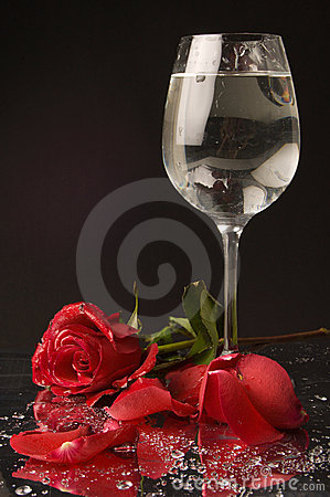 Rose and wine glass of water
