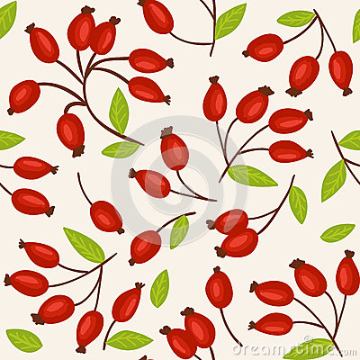 Rosehip seamless background