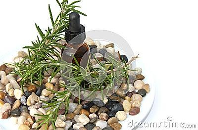 Rosemary Aromatherapy