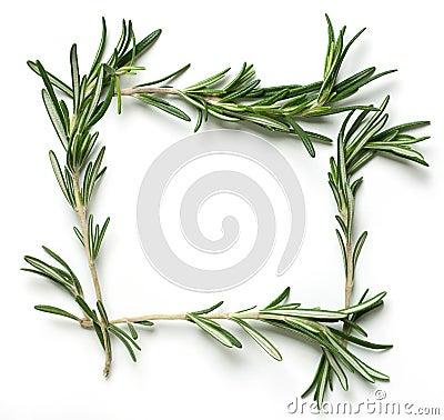 Rosemary frame